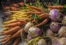 Najskuteczniejsze zwalczanie chwastów jednoliściennych kukurydza